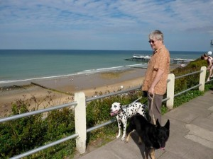 Keith walking our dogs - Lily (Dalmatian) and Poppy
